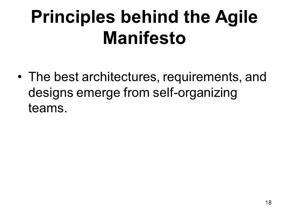Principles behind the Agile Manifesto The best architectures, requirements, and designs emerge from self-organizing teams. 18