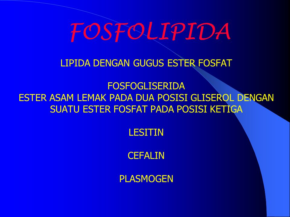 FOSFOLIPIDA LIPIDA DENGAN GUGUS ESTER FOSFAT FOSFOGLISERIDA ESTER ASAM LEMAK PADA DUA POSISI GLISEROL DENGAN SUATU ESTER FOSFAT PADA POSISI KETIGA LES