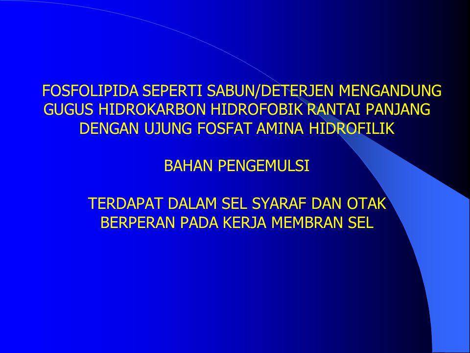 FOSFOLIPIDA SEPERTI SABUN/DETERJEN MENGANDUNG GUGUS HIDROKARBON HIDROFOBIK RANTAI PANJANG DENGAN UJUNG FOSFAT AMINA HIDROFILIK BAHAN PENGEMULSI TERDAP
