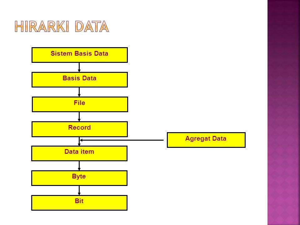 Sistem Basis Data Basis Data File Record Data item Byte Bit Agregat Data