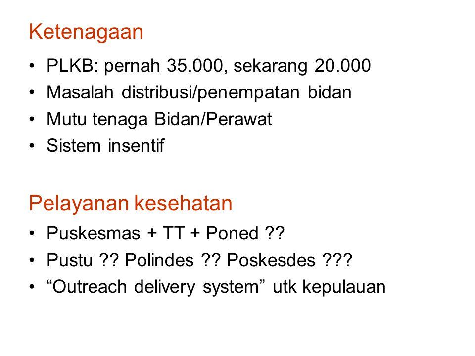 Ketenagaan PLKB: pernah 35.000, sekarang 20.000 Masalah distribusi/penempatan bidan Mutu tenaga Bidan/Perawat Sistem insentif Pelayanan kesehatan Puskesmas + TT + Poned ?.