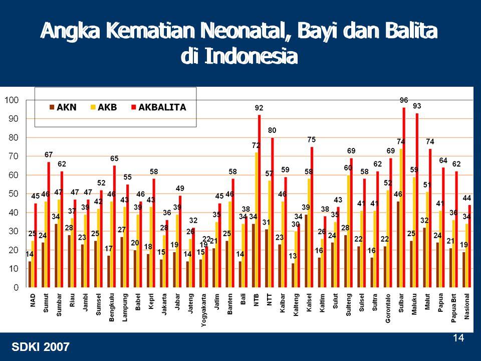 Angka Kematian Neonatal, Bayi dan Balita di Indonesia Angka Kematian Neonatal, Bayi dan Balita di Indonesia SDKI 2007 14