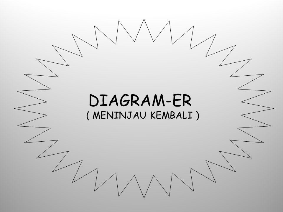 DIAGRAM-ER ( MENINJAU KEMBALI )
