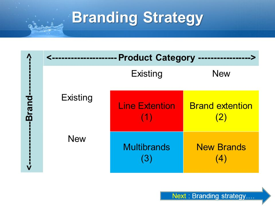 Branding Strategy ExistingNew Existing Line Extention (1) Brand extention (2) New Multibrands (3) New Brands (4) Next : Branding strategy….