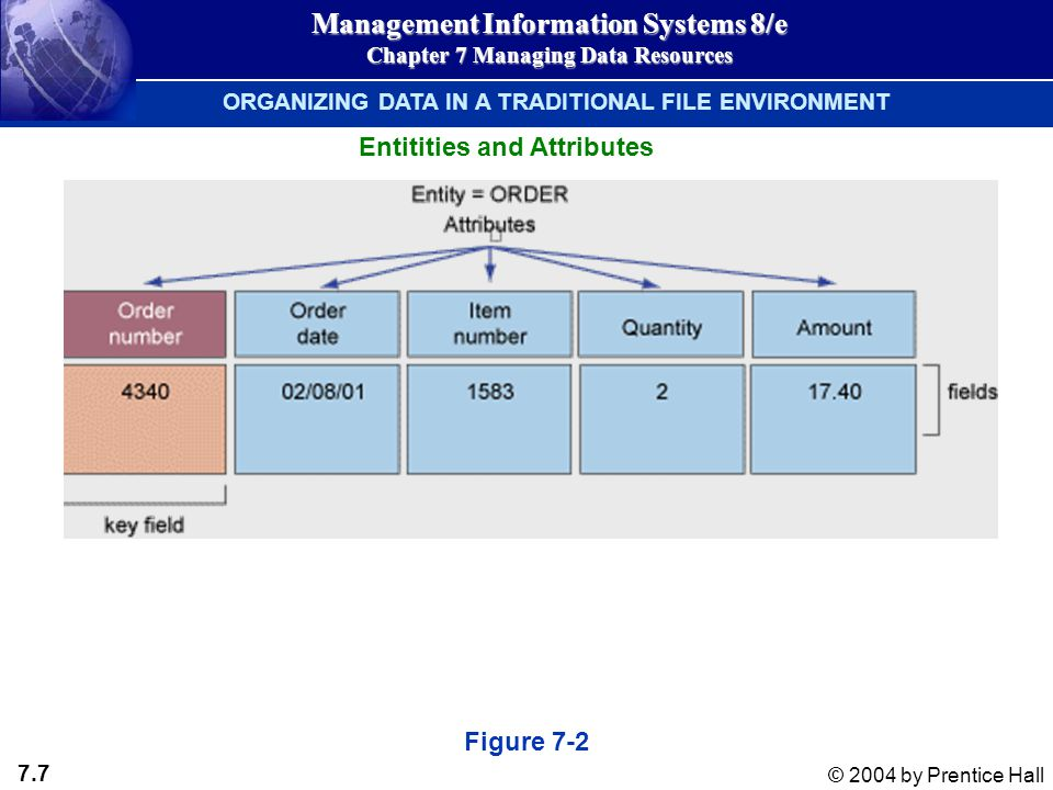 7.7 © 2004 by Prentice Hall Management Information Systems 8/e Chapter 7 Managing Data Resources Figure 7-2 Entitities and Attributes ORGANIZING DATA IN A TRADITIONAL FILE ENVIRONMENT