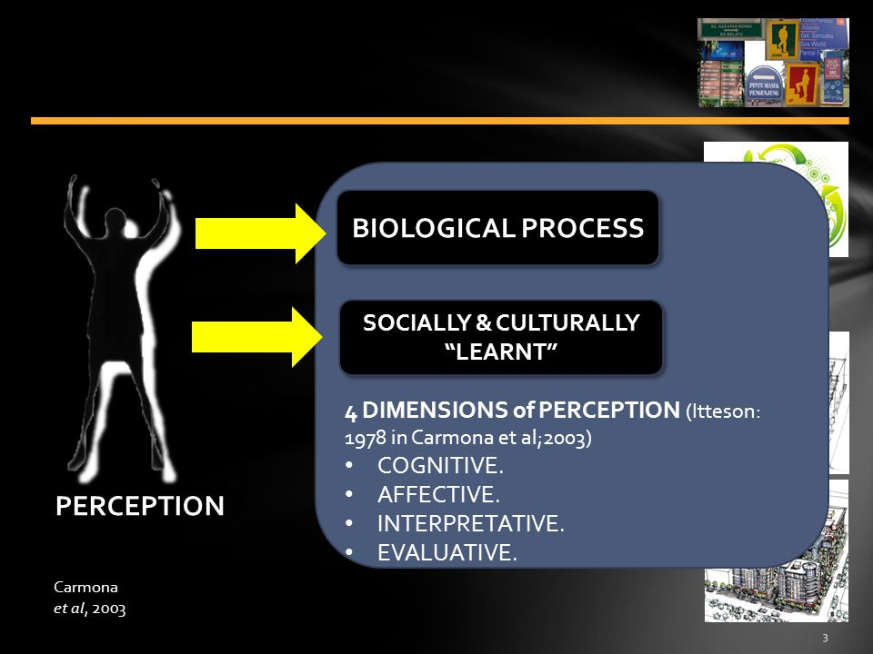 4 ENVIRONMENT as MENTAL CONSTRUCT BIOLOGICAL PROCESS SOCIALLY & CULTURALLY LEARNT PERCEPTION MONTGOMERY (1998 in Carmona et al:2003): IDENTITY, what a place is actually like.