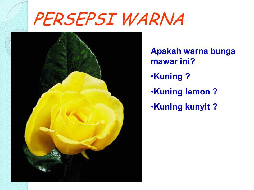 PERSEPSI WARNA Apakah warna bunga mawar ini? Kuning ? Kuning lemon ? Kuning kunyit ?