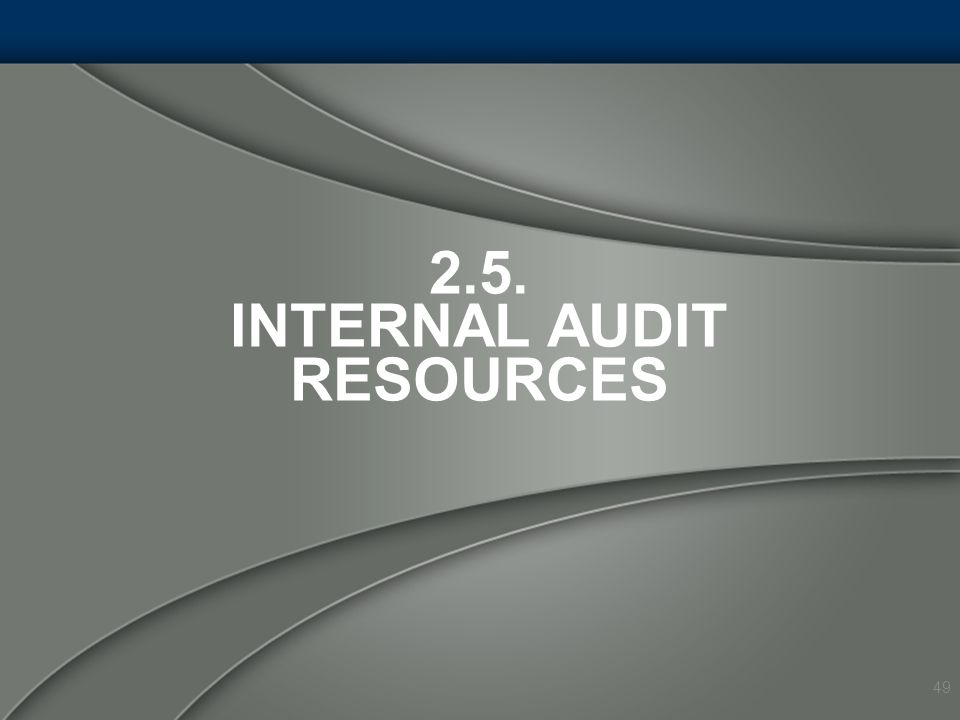 2.5. INTERNAL AUDIT RESOURCES 49