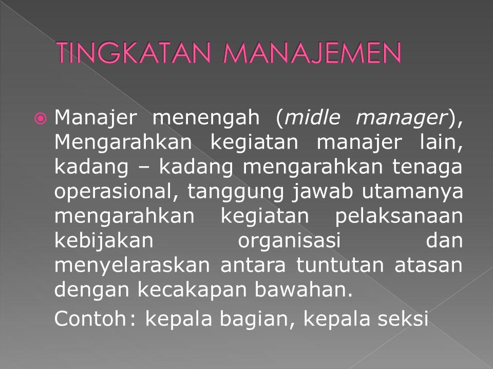  Manajer menengah (midle manager), Mengarahkan kegiatan manajer lain, kadang – kadang mengarahkan tenaga operasional, tanggung jawab utamanya mengara