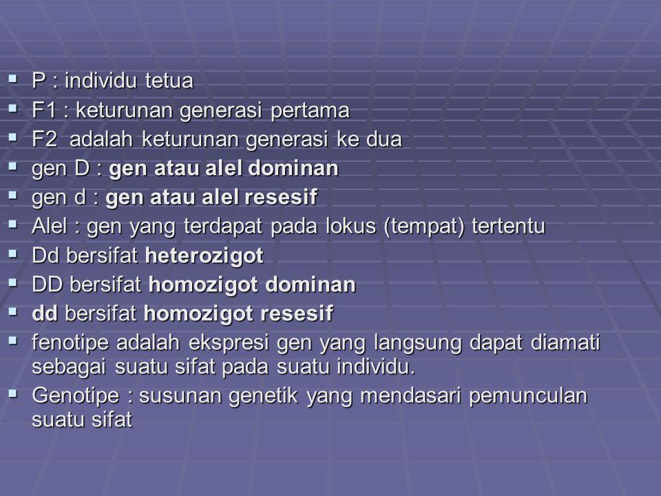  P : individu tetua  F1 : keturunan generasi pertama  F2 adalah keturunan generasi ke dua  gen D : gen atau alel dominan  gen d : gen atau alel resesif  Alel : gen yang terdapat pada lokus (tempat) tertentu  Dd bersifat heterozigot  DD bersifat homozigot dominan  dd bersifat homozigot resesif  fenotipe adalah ekspresi gen yang langsung dapat diamati sebagai suatu sifat pada suatu individu.