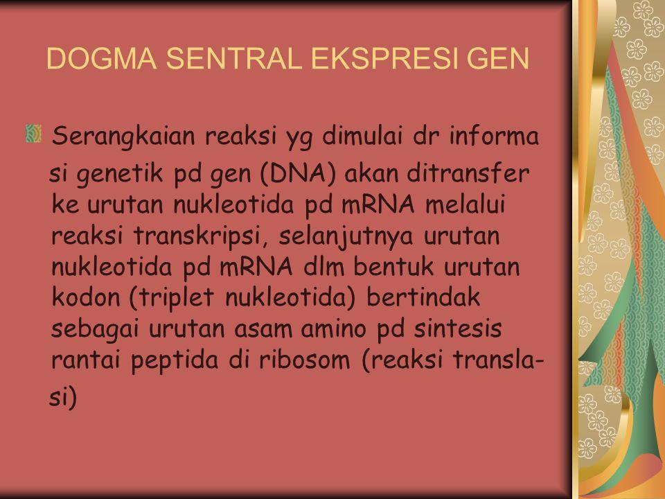 DOGMA SENTRAL EKSPRESI GEN Serangkaian reaksi yg dimulai dr informa si genetik pd gen (DNA) akan ditransfer ke urutan nukleotida pd mRNA melalui reaks
