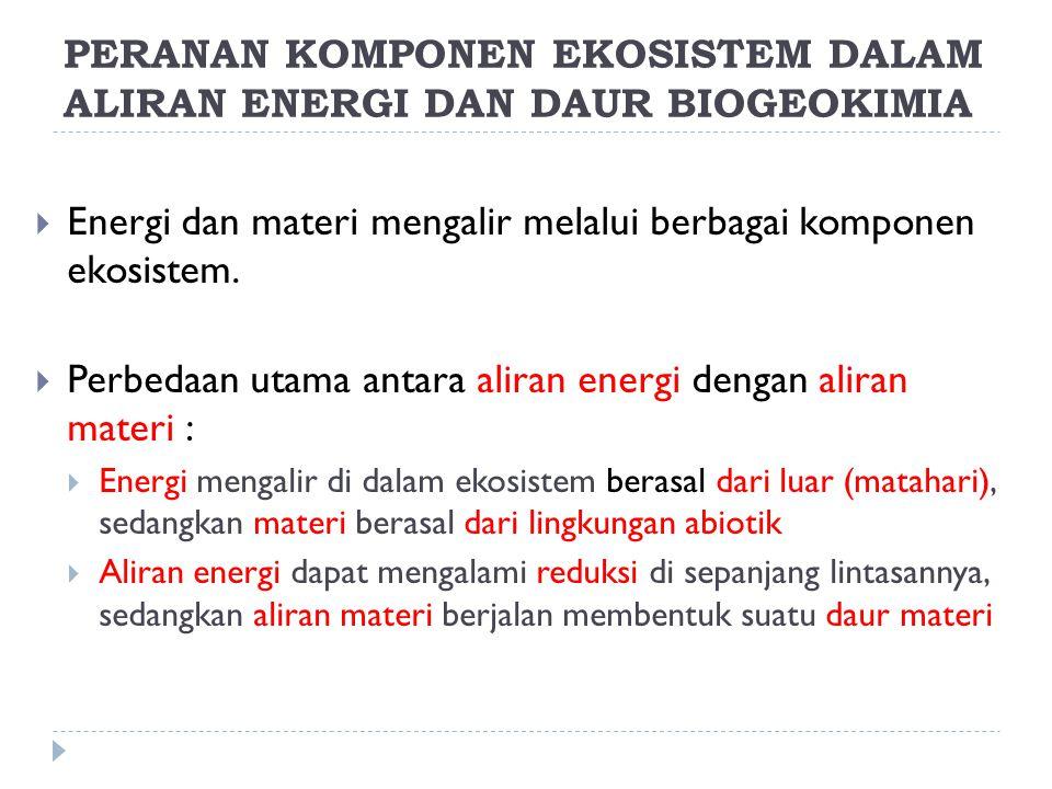 PERANAN KOMPONEN EKOSISTEM DALAM ALIRAN ENERGI DAN DAUR BIOGEOKIMIA  Energi dan materi mengalir melalui berbagai komponen ekosistem.  Perbedaan utam