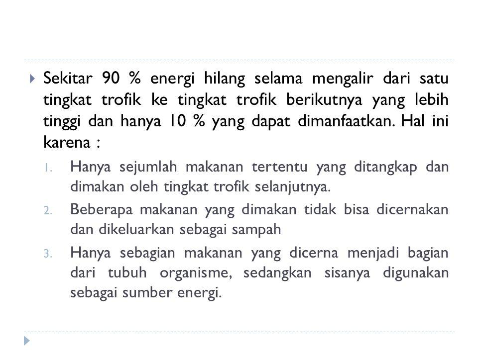  Sekitar 90 % energi hilang selama mengalir dari satu tingkat trofik ke tingkat trofik berikutnya yang lebih tinggi dan hanya 10 % yang dapat dimanfa