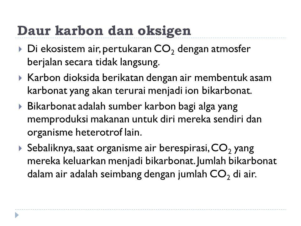 Daur karbon dan oksigen  Di ekosistem air, pertukaran CO 2 dengan atmosfer berjalan secara tidak langsung.  Karbon dioksida berikatan dengan air mem
