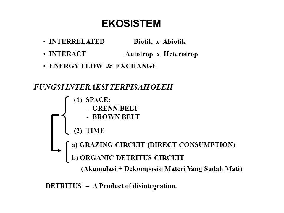 EKOSISTEM INTERRELATED Biotik x Abiotik INTERACT Autotrop x Heterotrop ENERGY FLOW & EXCHANGE FUNGSI INTERAKSI TERPISAH OLEH (1) SPACE: - GRENN BELT - BROWN BELT (2) TIME a) GRAZING CIRCUIT (DIRECT CONSUMPTION) b) ORGANIC DETRITUS CIRCUIT (Akumulasi + Dekomposisi Materi Yang Sudah Mati) DETRITUS = A Product of disintegration.