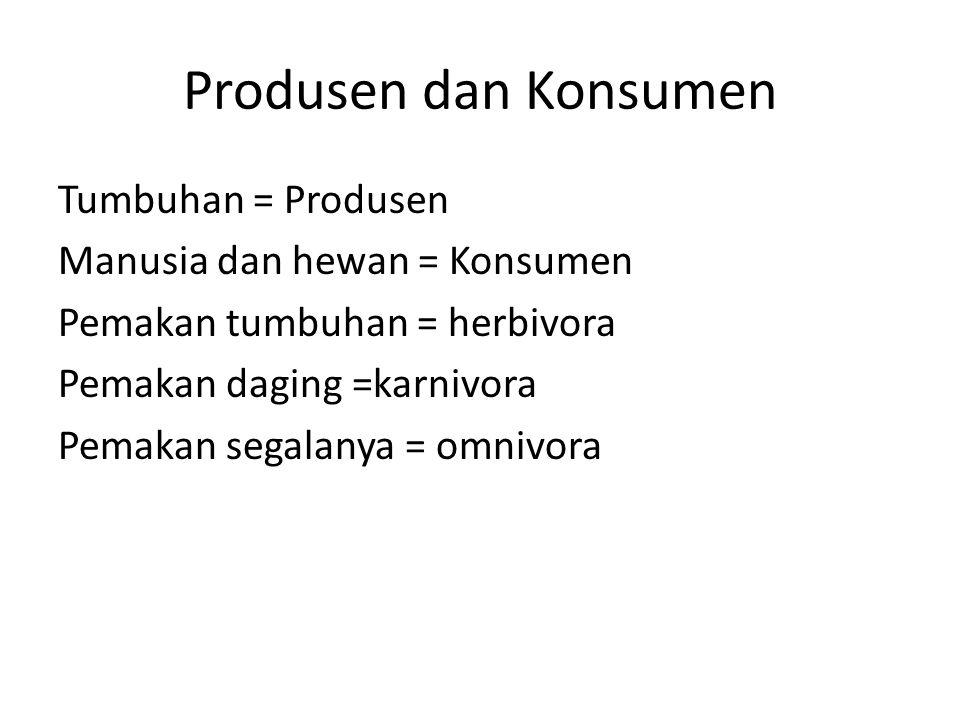 Produsen dan Konsumen Tumbuhan = Produsen Manusia dan hewan = Konsumen Pemakan tumbuhan = herbivora Pemakan daging =karnivora Pemakan segalanya = omni