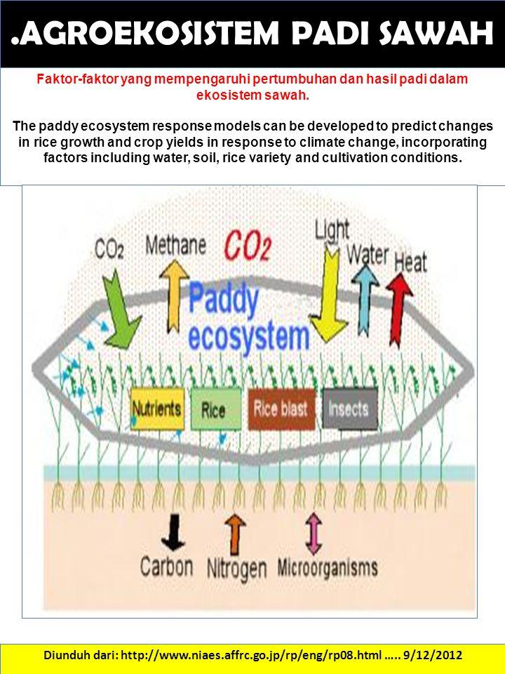 .AGROEKOSISTEM PADI SAWAH Diunduh dari: http://www.niaes.affrc.go.jp/rp/eng/rp08.html ….. 9/12/2012 Faktor-faktor yang mempengaruhi pertumbuhan dan ha