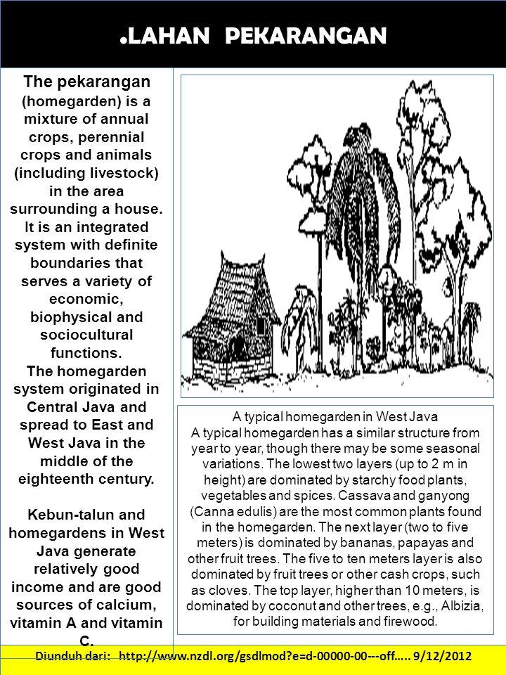 . LAHAN PEKARANGAN Diunduh dari: http://www.nzdl.org/gsdlmod?e=d-00000-00---off….. 9/12/2012 The pekarangan (homegarden) is a mixture of annual crops,