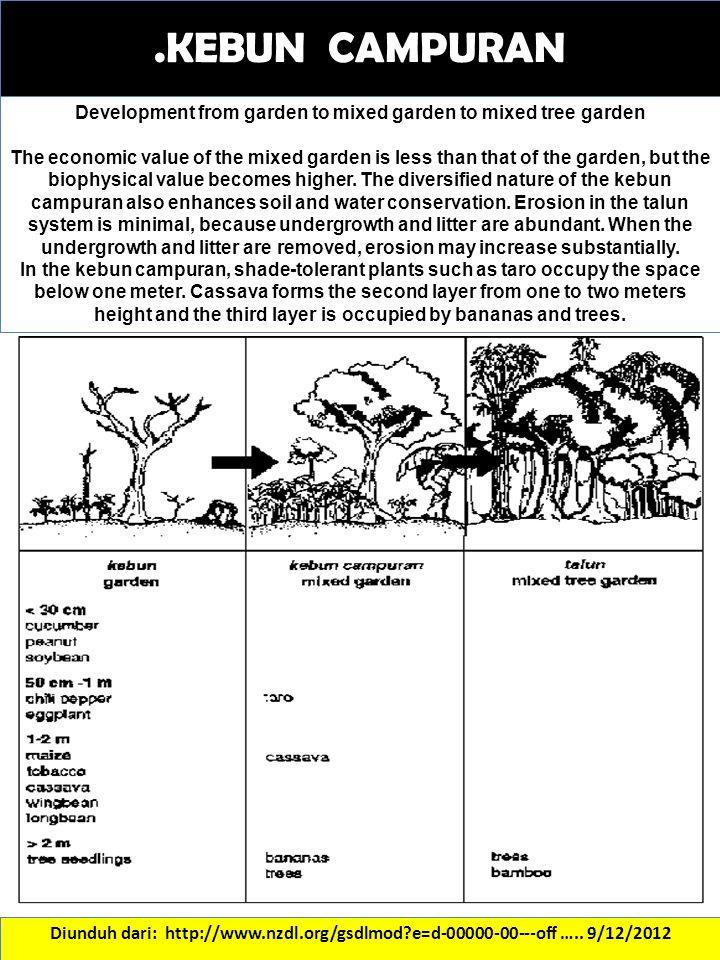 .KEBUN CAMPURAN Diunduh dari: http://www.nzdl.org/gsdlmod?e=d-00000-00---off ….. 9/12/2012 Development from garden to mixed garden to mixed tree garde