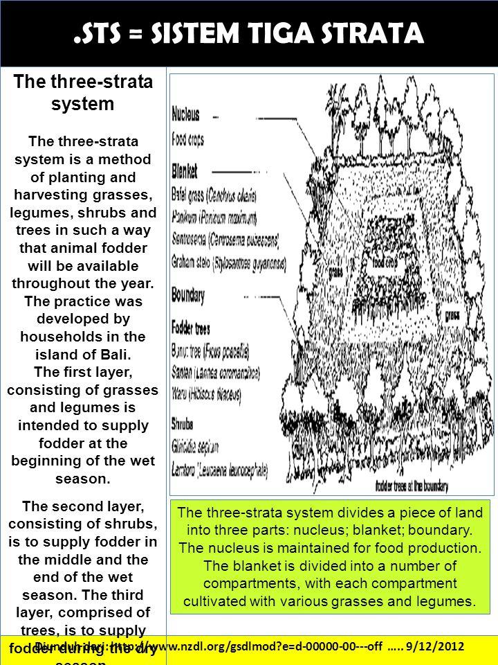 .STS = SISTEM TIGA STRATA Diunduh dari: http://www.nzdl.org/gsdlmod?e=d-00000-00---off ….. 9/12/2012 The three-strata system The three-strata system i