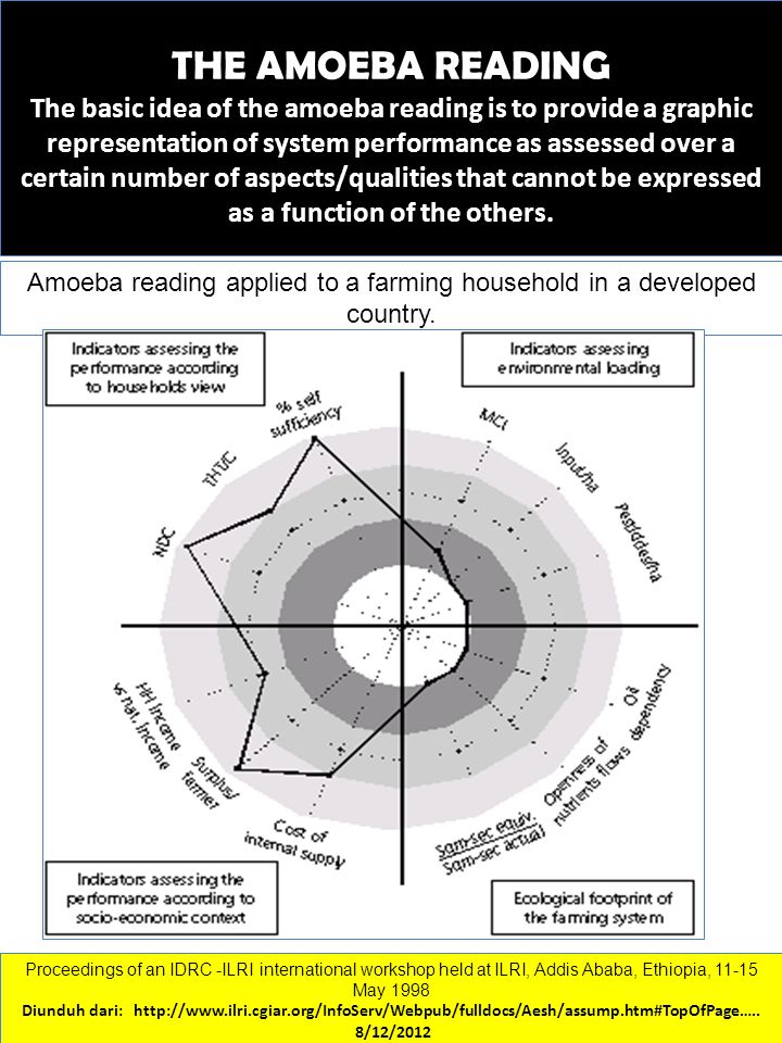 THE AMOEBA READING The basic idea of the amoeba reading is to provide a graphic representation of system performance as assessed over a certain number