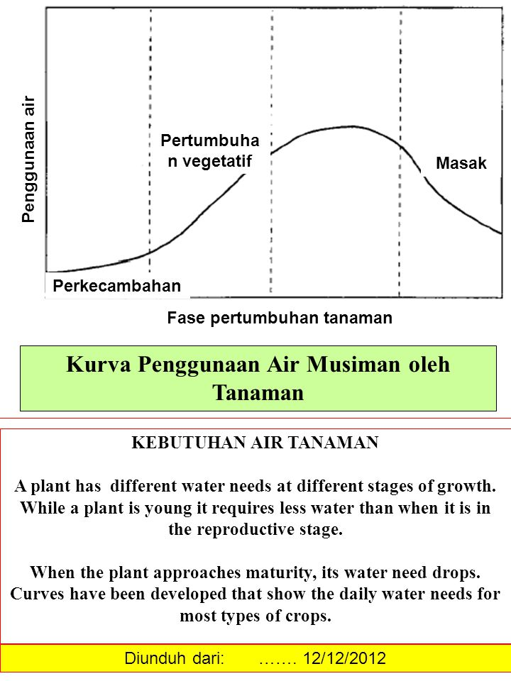 Kurva Penggunaan Air Musiman oleh Tanaman KEBUTUHAN AIR TANAMAN A plant has different water needs at different stages of growth. While a plant is youn
