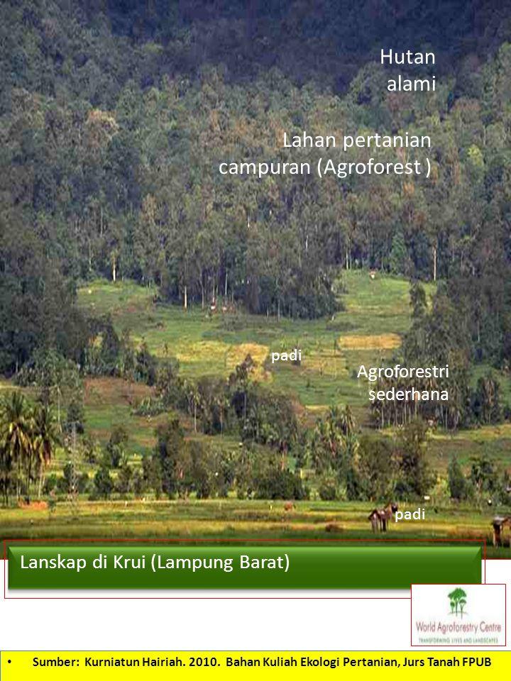 Hutan alami Lahan pertanian campuran (Agroforest ) padi Agroforestri sederhana Lanskap di Krui (Lampung Barat) Sumber: Kurniatun Hairiah. 2010. Bahan