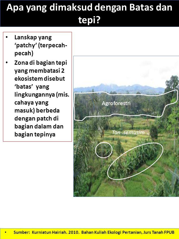 Apa yang dimaksud dengan Batas dan tepi? Lanskap yang 'patchy' (terpecah- pecah) Zona di bagian tepi yang membatasi 2 ekosistem disebut 'batas' yang l