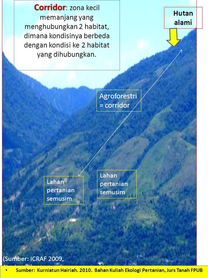 Hutan alami Agroforestri = corridor Lahan pertanian semusim Corridor Corridor : zona kecil memanjang yang menghubungkan 2 habitat, dimana kondisinya b