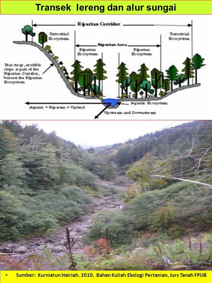 Transek lereng dan alur sungai