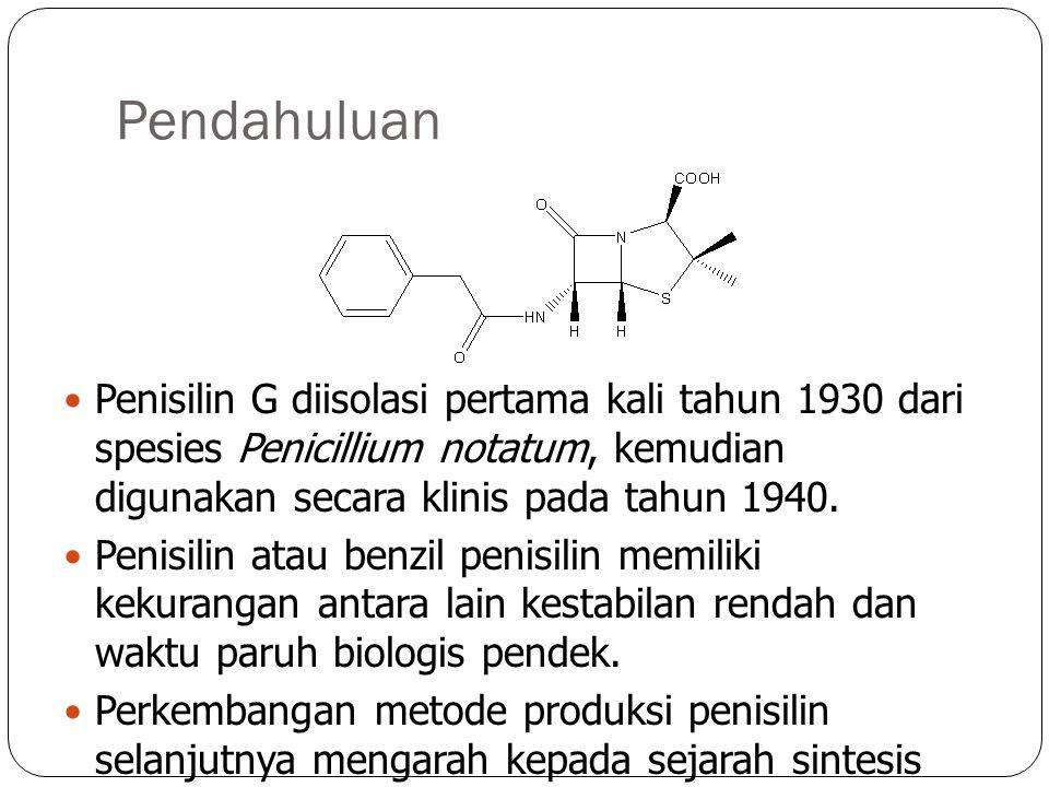 Pendahuluan Penisilin G diisolasi pertama kali tahun 1930 dari spesies Penicillium notatum, kemudian digunakan secara klinis pada tahun 1940. Penisili