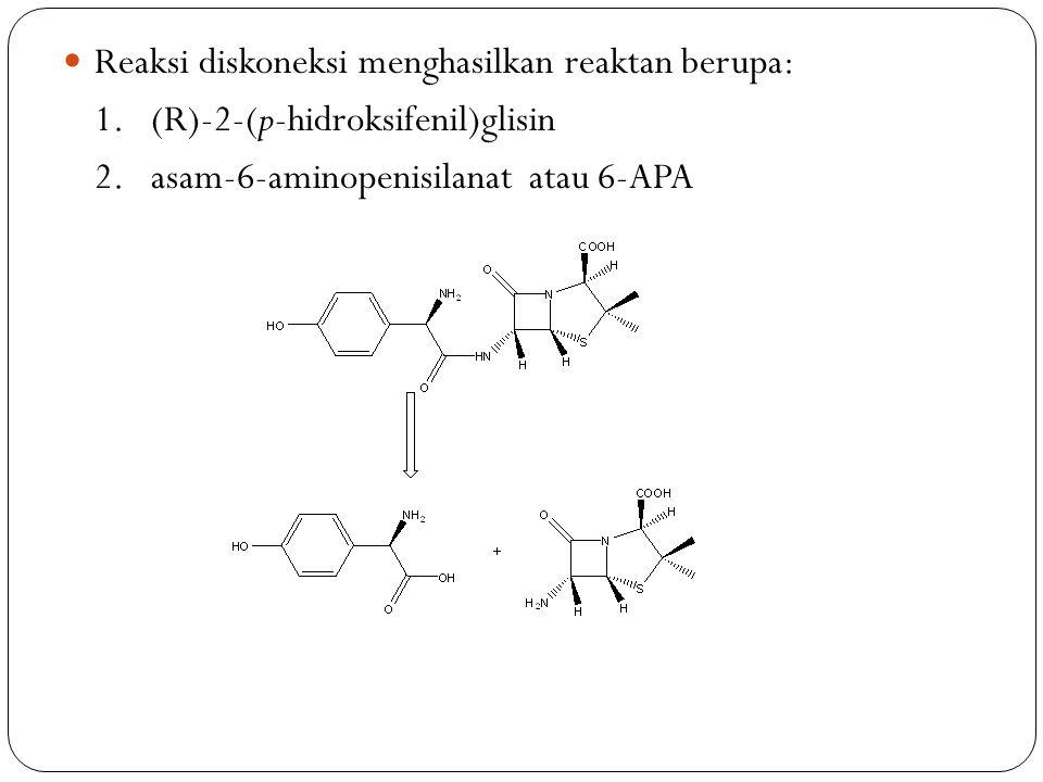Reaksi diskoneksi menghasilkan reaktan berupa: 1. (R)-2-(p-hidroksifenil)glisin 2. asam-6-aminopenisilanat atau 6-APA
