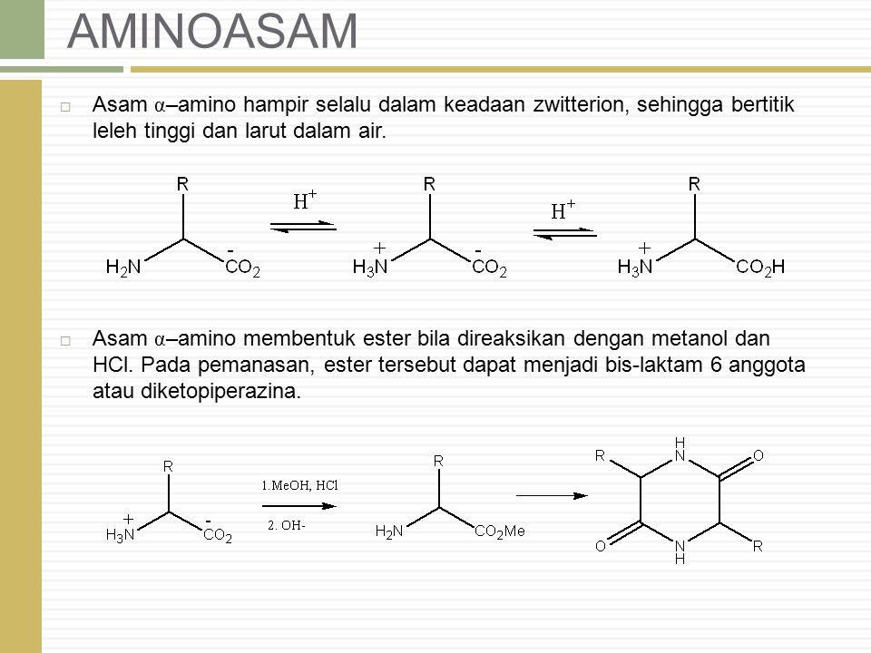 AMINOASAM  Asam α –amino hampir selalu dalam keadaan zwitterion, sehingga bertitik leleh tinggi dan larut dalam air.  Asam α –amino membentuk ester