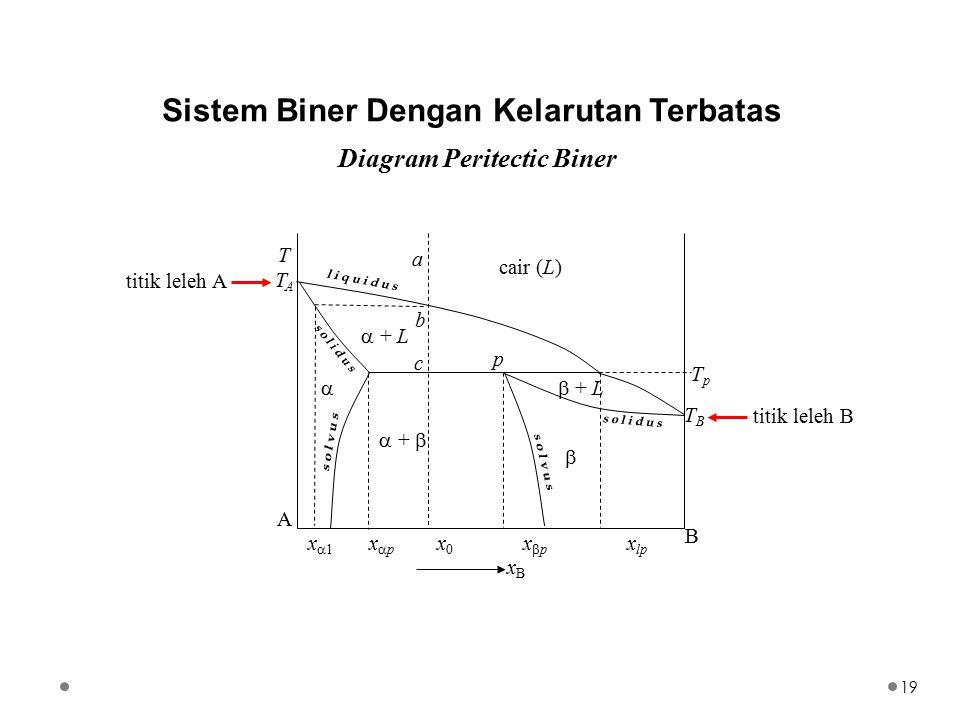 Sistem Biner Dengan Kelarutan Terbatas Diagram Peritectic Biner TpTp a b TTAATTAA B xBxB   + L cair (L)  + L  +   x  1 x  p x 0 x  p x lp TBT