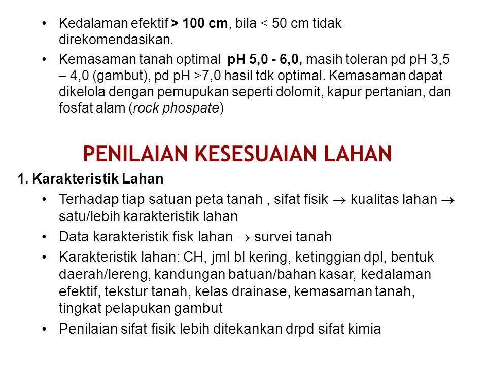 Kedalaman efektif > 100 cm, bila < 50 cm tidak direkomendasikan.
