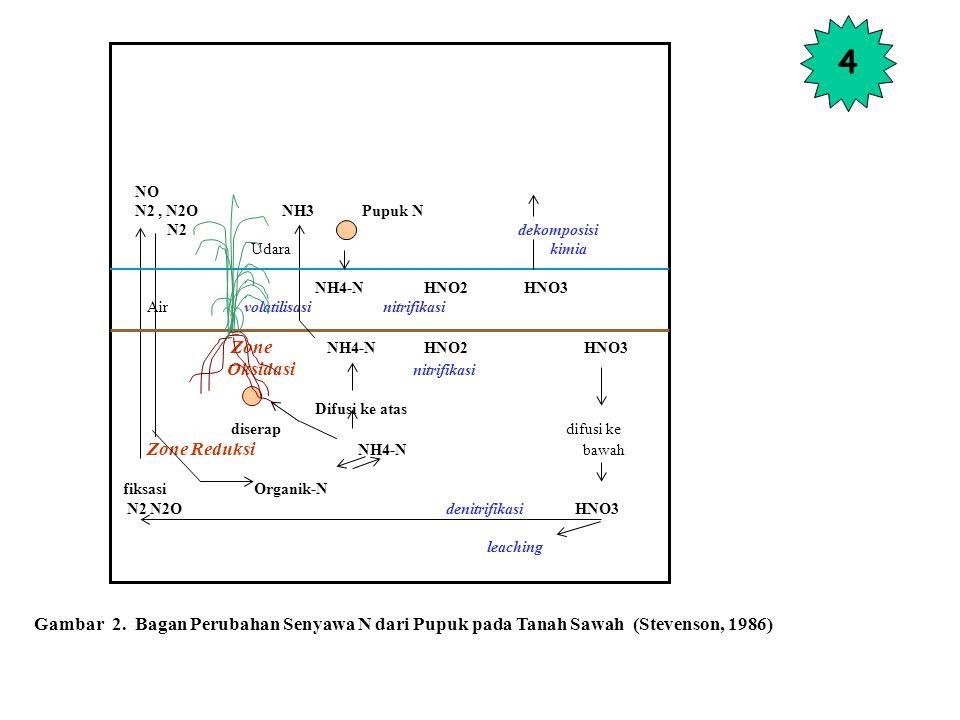 NO N2, N2O NH3 Pupuk N N2 dekomposisi Udara kimia NH4-N HNO2 HNO3 Air volatilisasi nitrifikasi Zone NH4-N HNO2 HNO3 Oksidasi nitrifikasi Difusi ke atas diserap difusi ke Zone Reduksi NH4-N bawah fiksasi Organik-N N2 N2O denitrifikasi HNO3 leaching Gambar 2.
