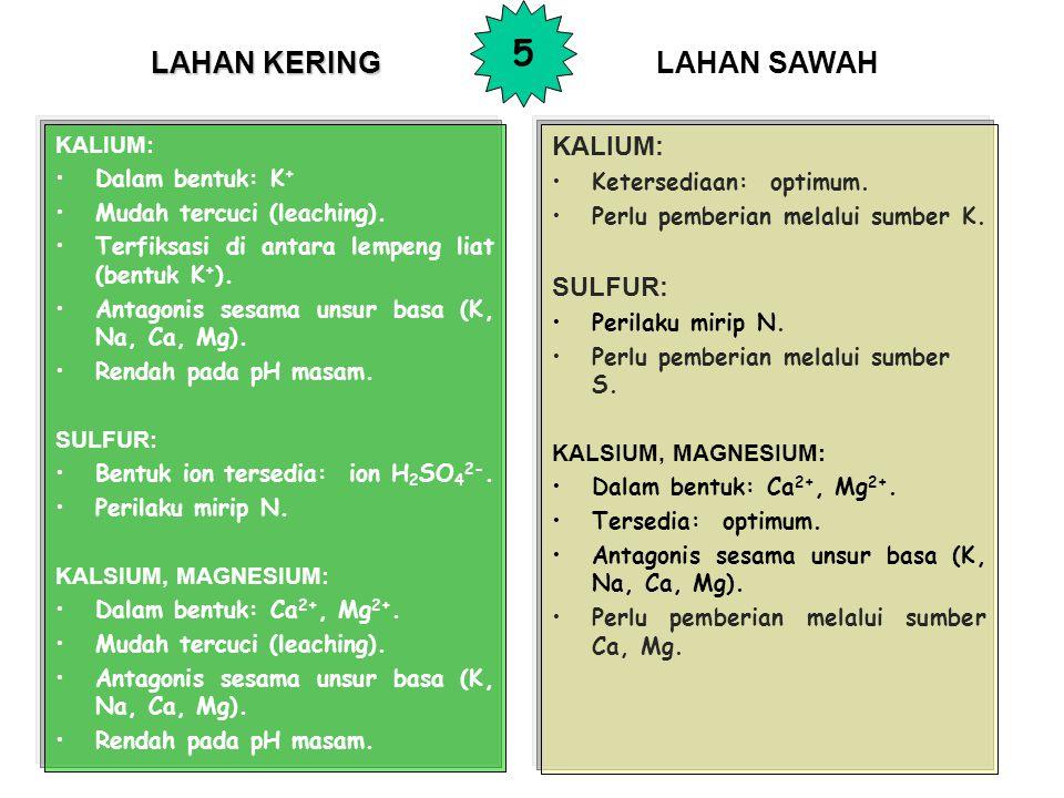 LAHAN KERING KALIUM: Dalam bentuk: K + Mudah tercuci (leaching).