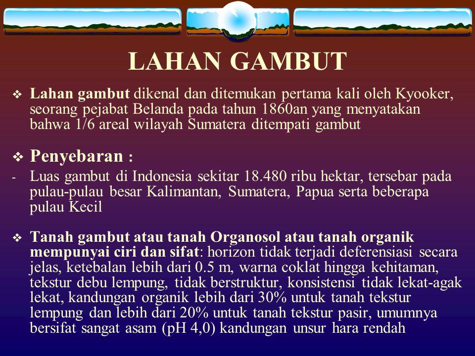 LAHAN GAMBUT  Lahan gambut dikenal dan ditemukan pertama kali oleh Kyooker, seorang pejabat Belanda pada tahun 1860an yang menyatakan bahwa 1/6 areal