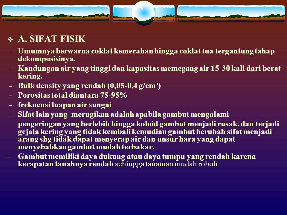  A. SIFAT FISIK - Umumnya berwarna coklat kemerahan hingga coklat tua tergantung tahap dekomposisinya. - Kandungan air yang tinggi dan kapasitas meme