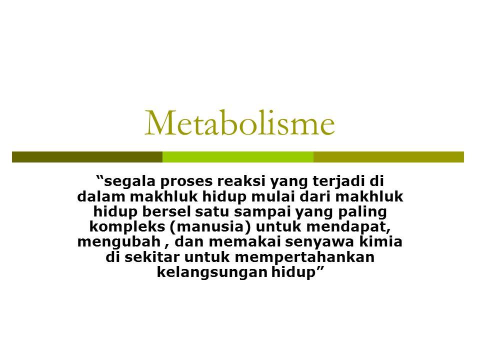 """Metabolisme """"segala proses reaksi yang terjadi di dalam makhluk hidup mulai dari makhluk hidup bersel satu sampai yang paling kompleks (manusia) untuk"""