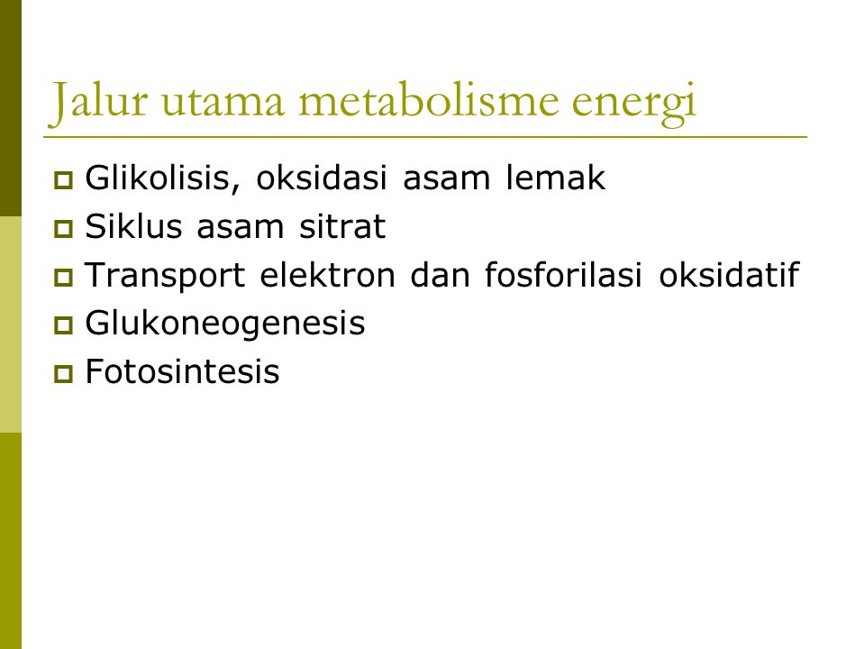 Jalur utama metabolisme energi  Glikolisis, oksidasi asam lemak  Siklus asam sitrat  Transport elektron dan fosforilasi oksidatif  Glukoneogenesis