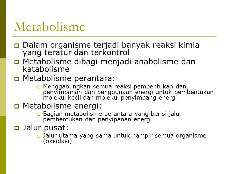 Metabolisme  Dalam organisme terjadi banyak reaksi kimia yang teratur dan terkontrol  Metabolisme dibagi menjadi anabolisme dan katabolisme  Metabo
