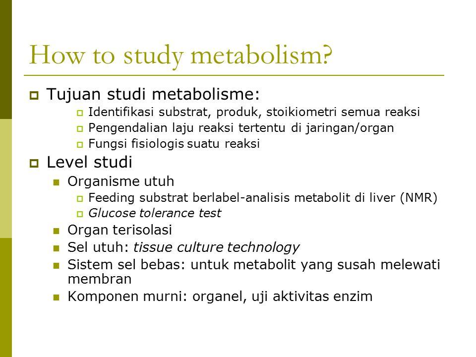 How to study metabolism?  Tujuan studi metabolisme:  Identifikasi substrat, produk, stoikiometri semua reaksi  Pengendalian laju reaksi tertentu di