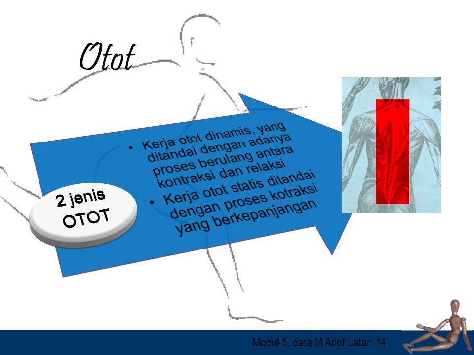 Modul-5, data M Arief Latar14 Otot