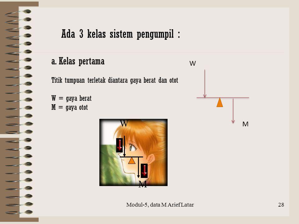 a. Kelas pertama Titik tumpuan terletak diantara gaya berat dan otot W = gaya berat M = gaya otot W M M W Modul-5, data M Arief Latar28 Ada 3 kelas si
