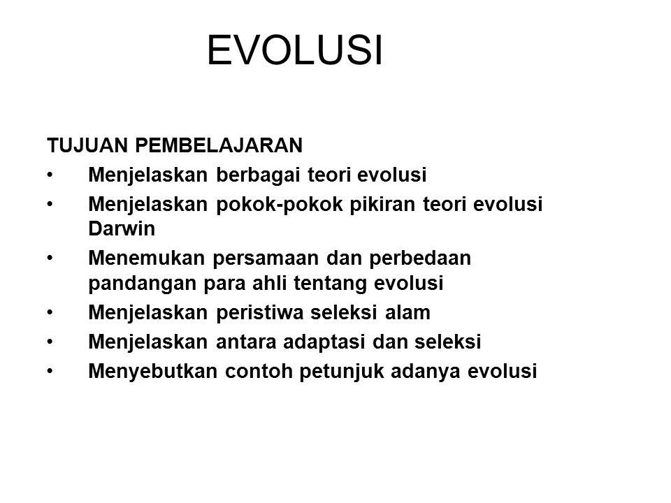 EVOLUSI TUJUAN PEMBELAJARAN Menjelaskan berbagai teori evolusi Menjelaskan pokok-pokok pikiran teori evolusi Darwin Menemukan persamaan dan perbedaan pandangan para ahli tentang evolusi Menjelaskan peristiwa seleksi alam Menjelaskan antara adaptasi dan seleksi Menyebutkan contoh petunjuk adanya evolusi