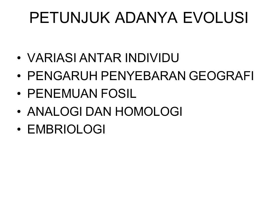 PETUNJUK ADANYA EVOLUSI VARIASI ANTAR INDIVIDU PENGARUH PENYEBARAN GEOGRAFI PENEMUAN FOSIL ANALOGI DAN HOMOLOGI EMBRIOLOGI