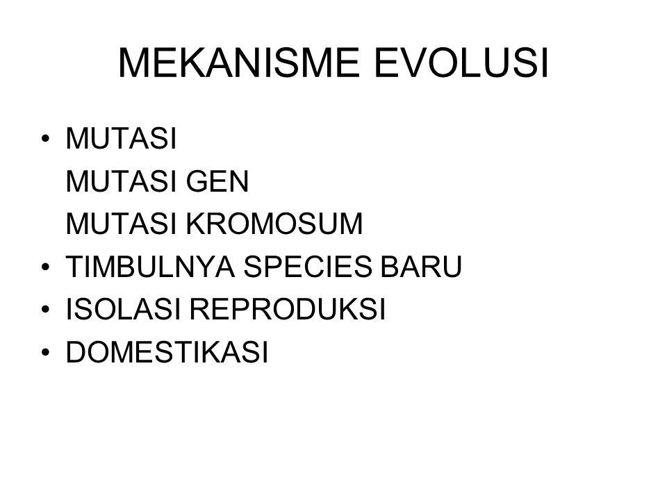 MEKANISME EVOLUSI MUTASI MUTASI GEN MUTASI KROMOSUM TIMBULNYA SPECIES BARU ISOLASI REPRODUKSI DOMESTIKASI