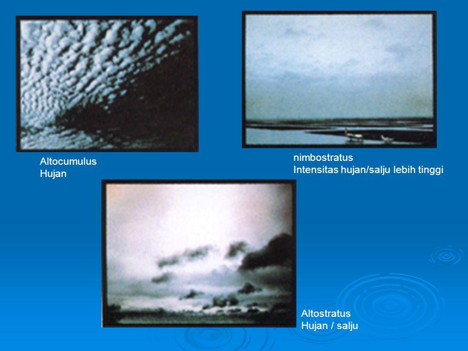 Stratocumulus : drizzle Stratus: drizzle Cumulus : Hujan/salju Cumulonimbus : hujan deras, badai, petir