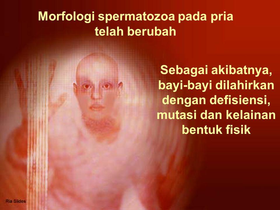Morfologi spermatozoa pada pria telah berubah Sebagai akibatnya, bayi-bayi dilahirkan dengan defisiensi, mutasi dan kelainan bentuk fisik